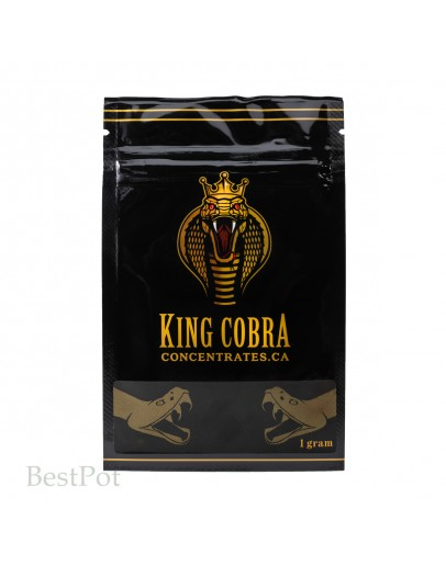 King Cobra Shatter: Cotton Mouth- Lemon Haze