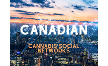 Cannabis Business Social Networks in Canada