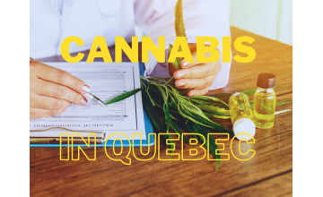 Cannabis in Quebec - Is cannabis legal in Quebec?
