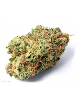 Sour Chiesel (AAAA)