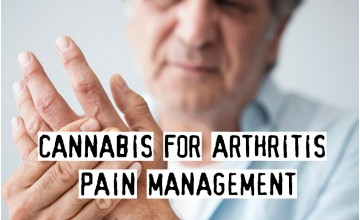 Cannabis For Arthritis Pain Management, Effective Or Not?