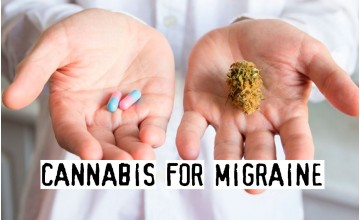 Cannabis for Migraine, How To Cure Migraine With Weed