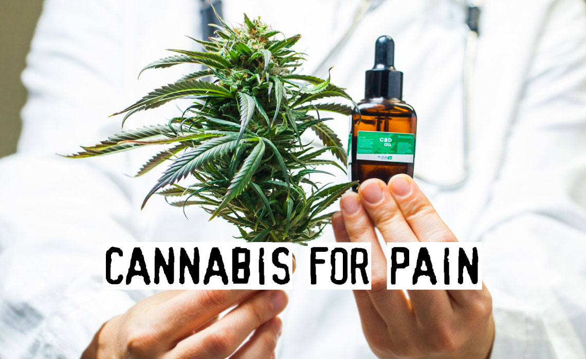 Cannabis for Pain