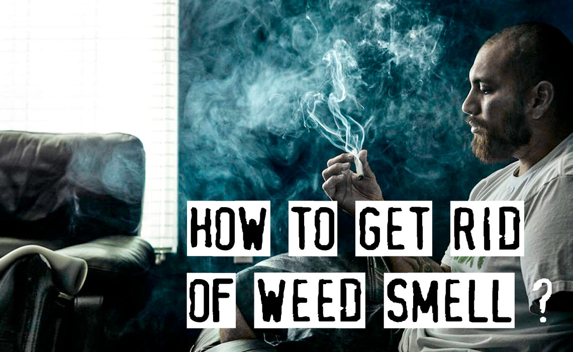 How To Get Rid Of Weed Smell, Top Practical Tips
