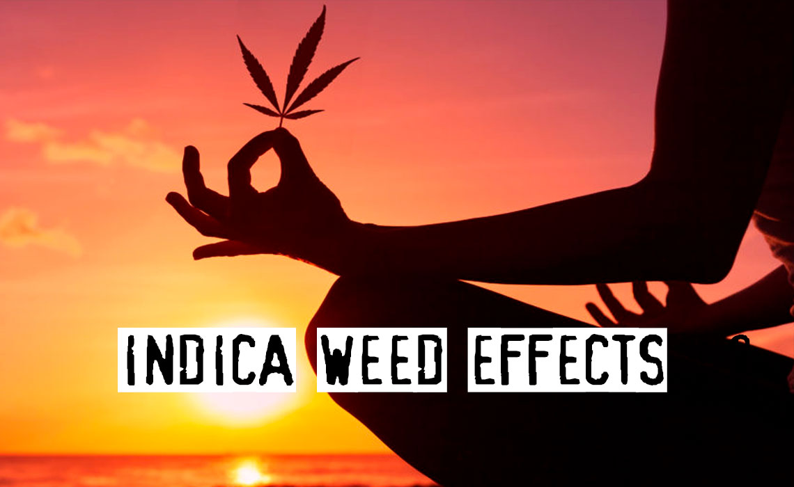 Indica Weed Effects, Most Common Uses of Indica Strains
