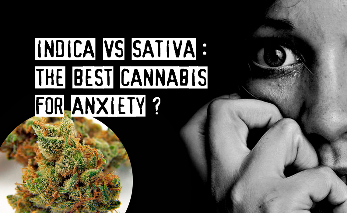 Indica vs Sativa Anxiety - What Are the Best Cannabis Strains to Treat Anxiety?