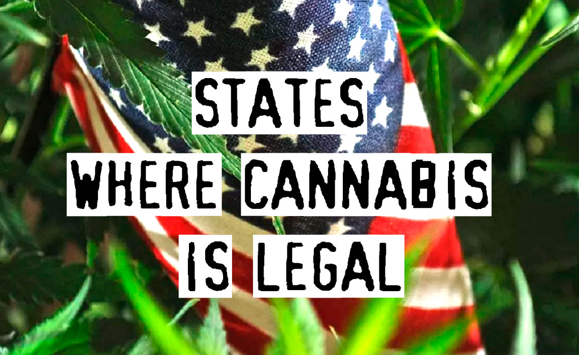 Is Weed Legalisation Good Or Bad? States Where Weed Is Legal