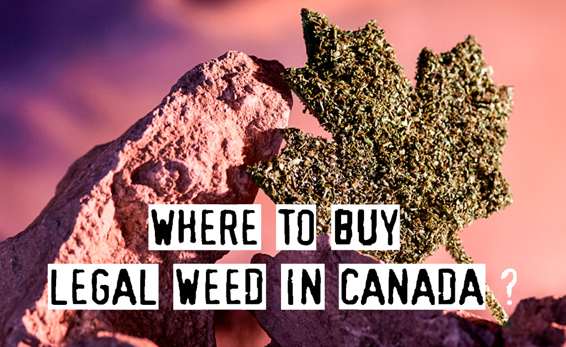 Where Can You Buy Weed In Canada? Top List 2021